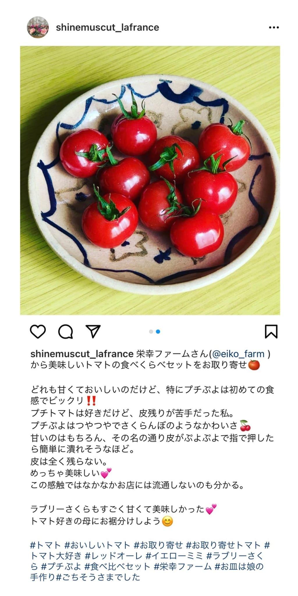 栄幸ファームのプチぷよトマトのお取り寄せ・通販